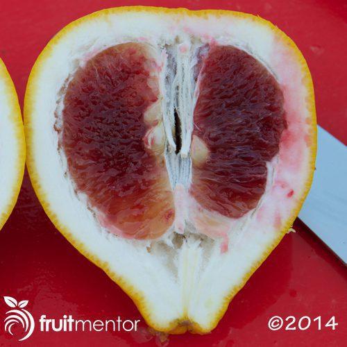 Valentine Pummelo heart shape