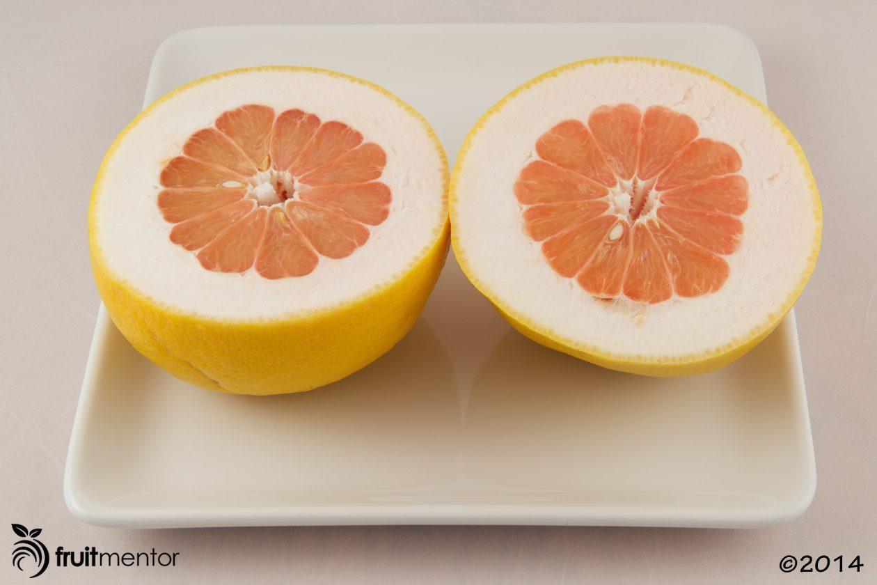 Rubidoux Pummelo-Grapefruit hybrid