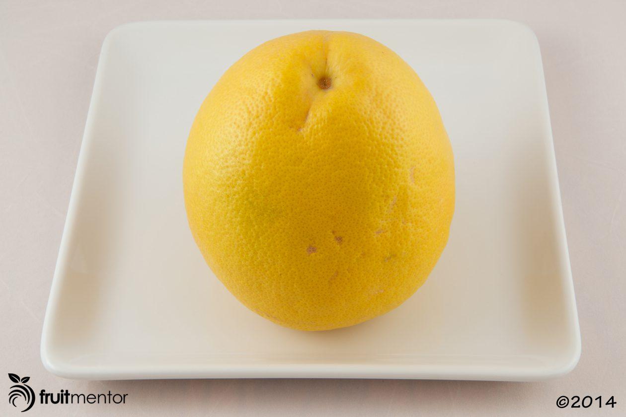 pummelo-grapefruit