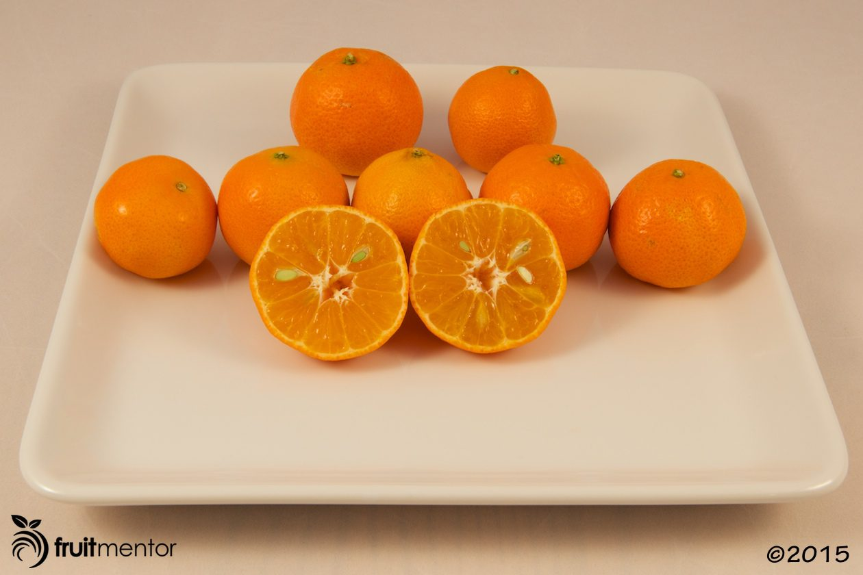 Carte Noir Clementine Mandarin Orange