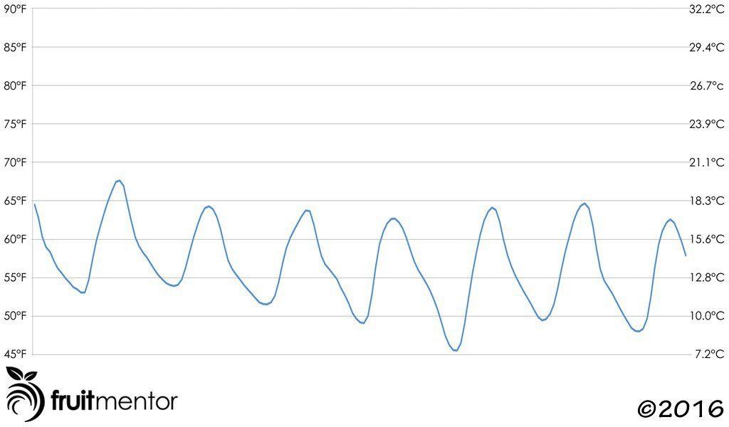Pronóstico de Temperatura Semanal Desfavorable para Injertar Cítricos