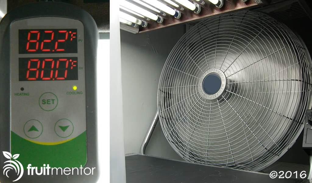 Máy điều nhiệt mới và quạt điện.